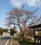 20210403_144808 宮崎2.jpg
